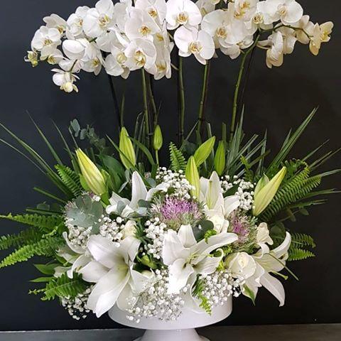 VIP orkide bahçesi ve aranjman tasarımı