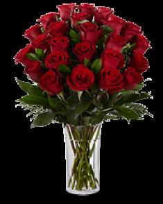 naturel kırmızı güller