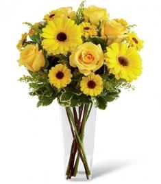 vazoda sarı gerberalar