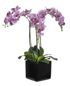 seramikte 3 dal pembe orkide