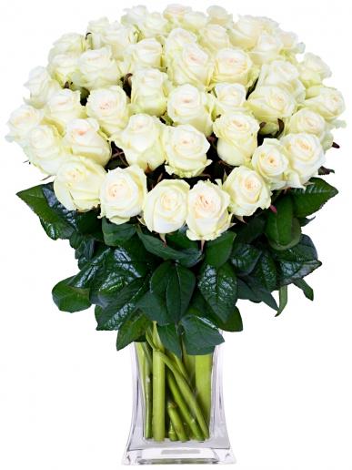 vazoda 33 adet beyaz güller