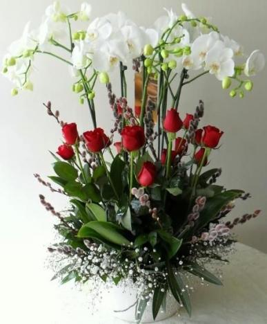 4 dal orkide ve kırmızı güller