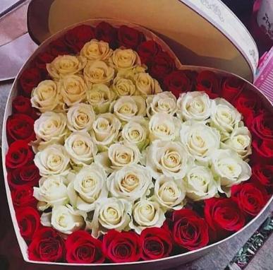 kalp kutuda 51 adet kırmızı beyaz güller