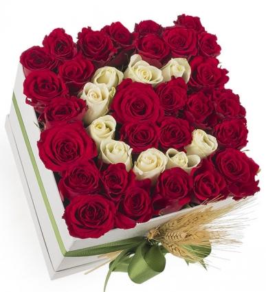 kare kutu kırmızı güller